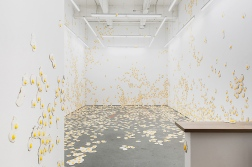 "Christopher Chiappa, Installation ""Livestrong"", Galerie Kate Werble, New York 2015. http://www.katewerblegallery.com/index.php?/artists/christopher-chiappa/"