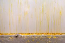 "Sarah Lucas, ""1000 Eggs ForWomen"", New Museum, New York 2018. ©New Museum."